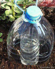 Простые схемы капельного полива растений из пластиковых бутылок