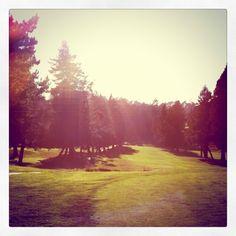 Tilden Park - Berkeley, California