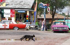 """in Seligman Arizona  """" Route 66 on My Mind """" Route 66 blog ; http://2441.blog54.fc2.com https://www.facebook.com/groups/529713950495809/ http://route66jp.info"""
