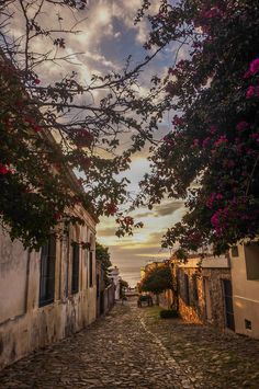 Colonia del Sacramento, Uruguay. For the best of art, food, culture, travel, head to theculturetrip.com. Or click http://theculturetrip.com/south-america/uruguay/ for everything a traveler needs to know about Uruguay.