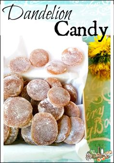 Dandelion Candy l Foraged dandelions, honey, herbs and lemon make a healthier treat l Homestead Lady.com