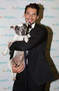 David Gandy at the Collars And Coats 2012 (via twitter @PetsPyjamas )-sharing my passion for animals