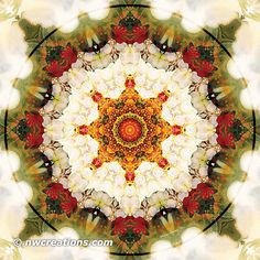 Mandalas from the Heart of Freedom 16 - http://nwcreations.com/mandalas-from-the-heart-of-freedom-part-3/