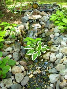 Aquaponics Aquaponics is a form of hydroponics combined with aquaculture. You have two tanks, fish in one and plants in the other. The water is pumped from the fish tank up to the grow bed and. Raising Chickens, Chickens Backyard, Hydroponics, Fish Tank, Water Features, Ponds, Outdoor Decor, Image, Koi