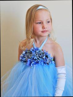 Cinderella Inspired Tutu Dress-