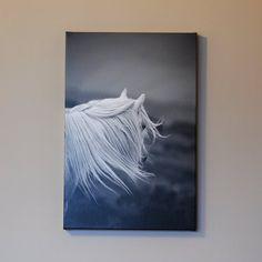 Canvas art canvas photo horse photography by MitchMcfarlanePhotos