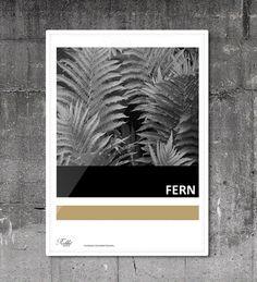 #fern #natural #poster