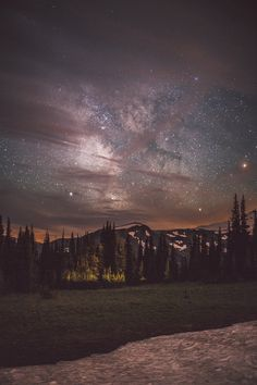 Incredible night sky via Bushsmarts. #camping #stars #twilight
