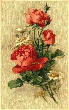 К. Кляйн. 144. Розы и ромашки.