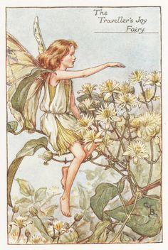 Flower Fairies: The TRAVELLER'S JOY FAIRY by GailsVintagePrints