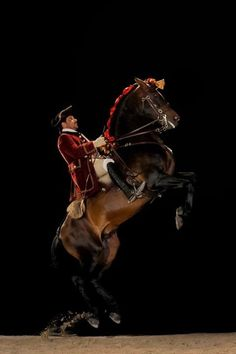 Escola Portuguesa de Arte Equestre