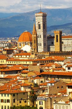 Palazzio Vecchio over rooftops - Florence Italy. Tuscany