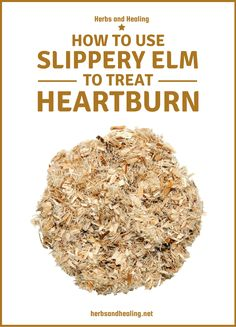 Heartburn occurs when the muscles in the lower oesophagus fail to seal the it from the stomach. Slippery elm has been used over centuries to treat heartburn and according to many people, this natural supplement is the epitome of efficacy. Stomach Reflux, Stomach Acid, Acid Reflux Relief, Slippery Elm, Heartburn Relief, Foods To Avoid, Natural Supplements, How To Dry Basil, Muscles