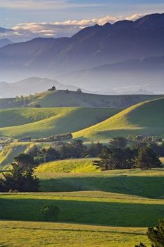 Photo of the scenic countryside seen from along Scarborough Street on Kaikoura Peninsula, New Zealand.