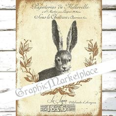 Bunny Rabbit Le Lapin Hare Large Image by GraphicMarketplace