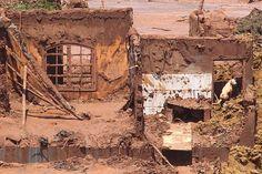 Resgates em Mariana: Duas barragens se romperam em Mariana (MG). O distrito de Bento Rodrigues foi invadido pela lama.muito triste para a população e os animais,principalmente os que não conseguiram sair do local como esse pequeno cão,espero que tenha sido salvo.