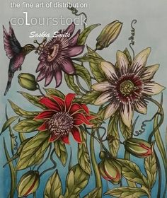 Copic Marker Benelux: Passionflower/                                               Red Passion: R35-37-59, RV99, V01-17, YG000-03 and Molotov Yellow  Purple Passion: V000-09-12-15-17, Y00 -02, YG01 and Molotov White  Light Passion: B66, R59, YG000-00-01-03-05  Red buds: YG01-03-17-61-63-67 Purple flower buttons: YG01-03-17-61-63-67, V12-15  Leaves and steal: YG01-03-17-61-63-67 and Molotov White  Background: B0000-000-00-01-02-04  Hummingbird : B34-37-39, V09-12-15-17, YG03-17-67, Y38
