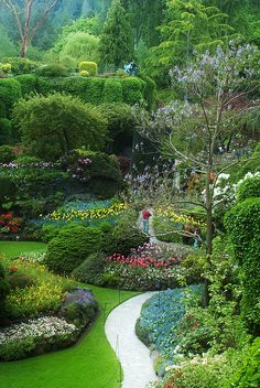 In the early 1990's we visited Butchart Gardens - beautiful! Beyond fabulous!