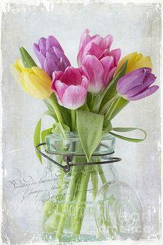 Title  Tulips In A Jar  Artist  Cindi Ressler  Medium  Photograph - Photograph