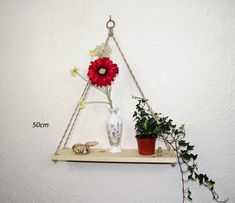 Hanging Geometric Rope Shelf, Rustic Natural Pine — Sew Very Chic Rope Shelves, Shelf, Mixed Fiber, Hanging Rope, Linseed Oil, Cotton Rope, Plant Hanger, House Plants, Pine