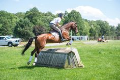 Practical Horseman Magazine and eventer Ryan Wood have these exercises to help train your horse to jump corners. Horse Exercises, Horse Riding Tips, Natural Horsemanship, English Riding, Dream Barn, Confidence Building, Barrel Racing, Show Jumping