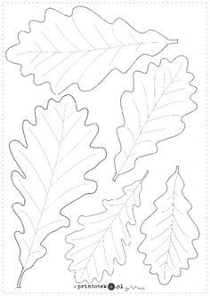Liście dębu - Materiał zawiera dwie karty - pierwszą z obrysami liści, do wydrukowania na kolorowych kartkach lub pokolorowania, drugą z kolorowymi liśćmi. Wycięte liście mogą posłużyć do dekoracji jesiennej gazetki. Diy Room Decor, Rooster, Leaves, Diy Stuff, Handmade, Plants, Hand Made, Diy Things, Handarbeit