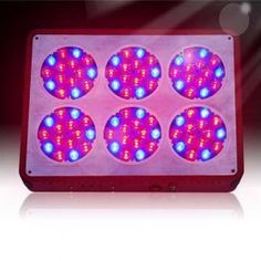 Pflanzenlampe Apollo 6 LED Grow Lamp Grow Lights LED Hydroponics Lighting For Sale. The red wavelength for plants budding and blossoming and fruiting,blue wavelength for plants photosynthesis and keep growing steadily. Grow Lamps, Hydroponic Growing, Shield Design, Hydroponics System, Led Grow Lights, Plant Growth, Photosynthesis, Types Of Lighting, Glass Design