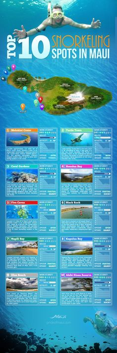 10 Snorkeling Spots in Maui Top 10 Maui snorkeling spots guide Come & visit the that most people never see! in at Top 10 Maui snorkeling spots guide Come & visit the that most people never see! Trip To Maui, Hawaii Vacation, Vacation Places, Vacation Trips, Places To Travel, Mahalo Hawaii, Maui Hawaii, Hawaii 2017, Maui Travel