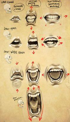 Expressions- Mouth + Jaw by eponagirl.deviantart.com on #deviantART: