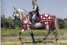 Spanish-Norman Horse | Medieval knight horse was a cross between the Andalusian and Percheron | Versatile athletic sport horse of elegant beauty.  Free, hardworking movements with harmonic cadence.  Hard, persistent performance horse with good character and temperament.  Proven in all disciplines of riding and driving, western dressage, shows and parades