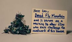 Would that work on spiders?  Though, I couldn't seem to walk past a Dead Spider Mountain in my house...every day.