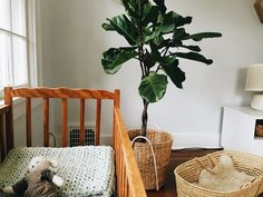 shared space // nursery + master bedroom