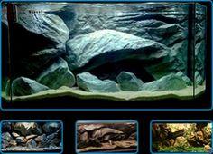 C models - Massive rocks Aquarium Backgrounds, Fresh Water Tank, Rocks, Models, Gallery, Unique, Life, Freshwater Fish Tank, Templates