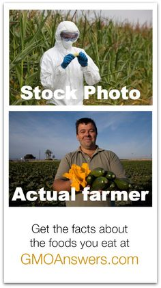 Stock photos make good stories, but actual farmers make great crops. Get the facts on GMOs at GMOAnswers.com.