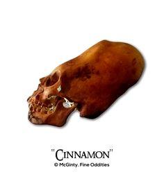 """Cinnamon"" The Elongated Paracas Skull. Shrunken Heads, Oddities & Curiosities."