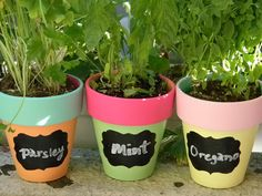 Color Blocked Herb Pots with Chalkboard Labels -- LOVE these!!  Need to make some for fine herbs and maybe even a pencil holder to decorate my teacher's desk ;)