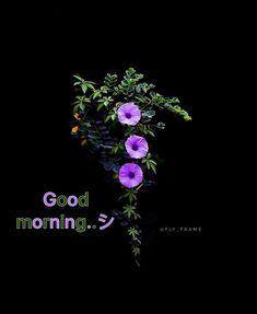 Morning Love, Good Morning Flowers, Good Morning Images, Good Morning Quotes, Good Morning Animation, Emoji Pictures, Good Morning Wallpaper, Good Night Image, Heart Wallpaper