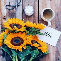 Flat Lay Photography, Coffee Photography, Art Photography, Cream Aesthetic, Aesthetic Coffee, Life Fitness, Cool Pictures For Wallpaper, Sunflower Iphone Wallpaper, Sunflower Photography