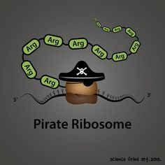 Molecular biology humor: Pirate Ribosome by Science Fried Art