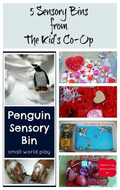 Sensory Bins from the Kid`s Co-Op