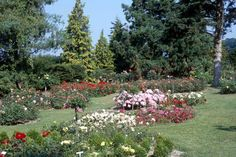 Perennial Flower Bed Design Ideas >>> You can find more details by visiting the image link.