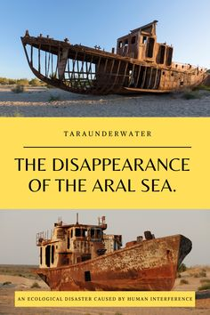 The disappearance of the Aral Sea and the ecological impacts that have followed is a great example as to why implementing sustainable development is key to the longevity of our earth's resources.   Sustainability  conservation  environment  natural disaster  resources Environmentalist, Marine Biology, Sustainable Development, Science For Kids, Natural Disasters, Ecology, Conservation, Sustainability, Ocean