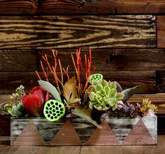 42 Perfect Cactus Garden Design Ideas For Your Garden Succulents In Containers, Cacti And Succulents, Planting Succulents, Succulent Planter Diy, Succulent Centerpieces, Succulent Cuttings, Cactus, Planter Boxes, Garden Inspiration