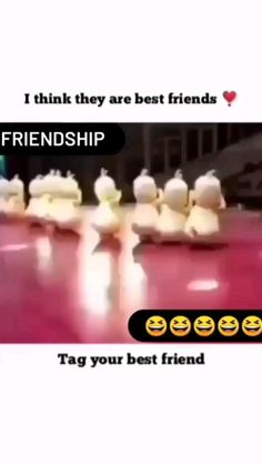 Cute Quotes For Friends, Best Friend Quotes Funny, Best Friend Songs, Cute Funny Quotes, Best Friends, Funny Songs, Fun Quotes, Life Quotes, Funny Videos Clean
