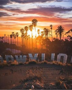 Los Angeles, California by Alec Basanec - Hollywood California Dreamin', Hollywood California, Los Angeles California, Los Angeles Sunset, Los Angeles Skyline, Los Angeles Usa, Photo Wall Collage, Picture Wall, Hollywood Sign