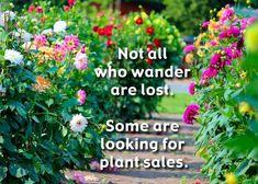 Gardening Memes, Gardening Tips, Shade Garden, Garden Plants, Funny Garden Signs, Garden Whimsy, Garden Quotes, Garden Items, Flower Quotes