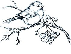 This chubby bird has found a tree full of berries on a snowy winter day. This quality cling-mount rubber stamp is ma Birds Painting, Digi Stamps, Drawings, Painting Patterns, Art, Bird Drawings, Digital Stamps, Vintage Embroidery, Coloring Pages