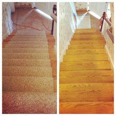 #StairRepair  #wolffremodel