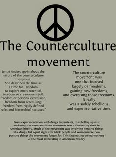 What is a good argument i can write on about drugs and counterculture in the Sixties.?