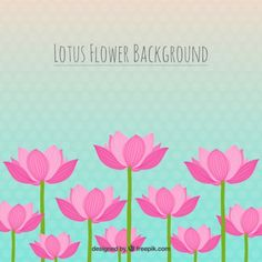 Lotus flower background Premium Vector